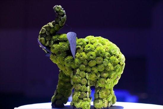 Elephant centerpiece weddings pinterest