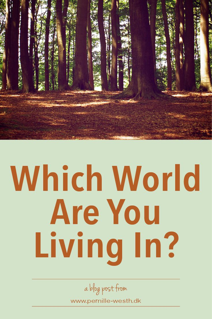 Are you living in the world of your mind, are you living in the virtual world, or are you living in the physical world? Our minds have a tendency to make us live in its world - if we are not aware that is. Read my blog post; http://www.pernille-westh-blog.com/single-post/2016/07/04/Which-World-Are-You-Living-In
