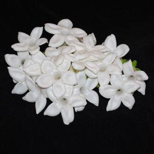 Stephanotis White Flower 300