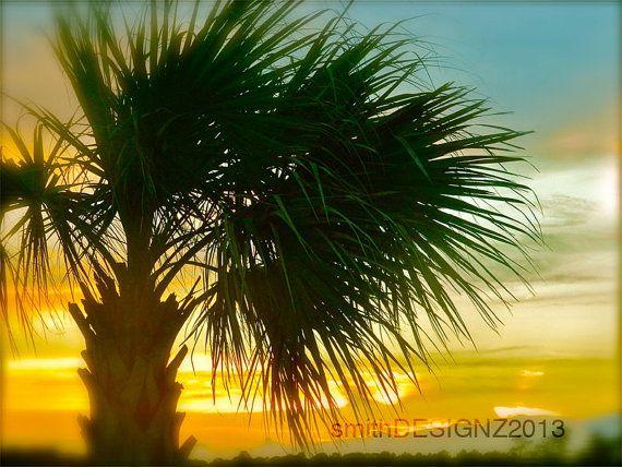 Palm Tree Sunset on Pawley's Island Photography by smithDESIGNZ, $15.00
