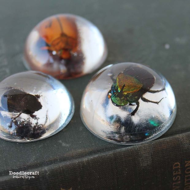 Beetles in Resin Jewelry, but you could do this with anything, ladybugs, flowers, acorns - let your imagination run free!