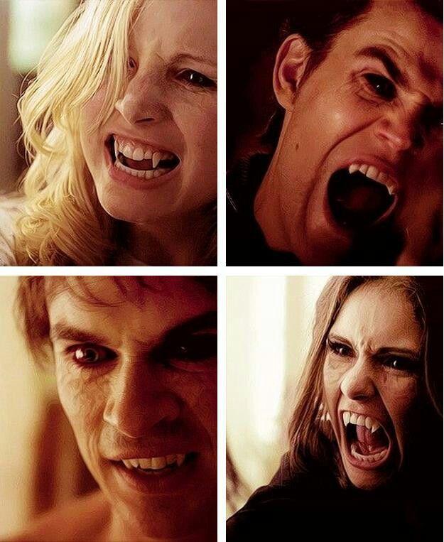 Caroline (top left) Stefan (top right)  Damon (bottom left)  either Katherine or elana (bottom right)
