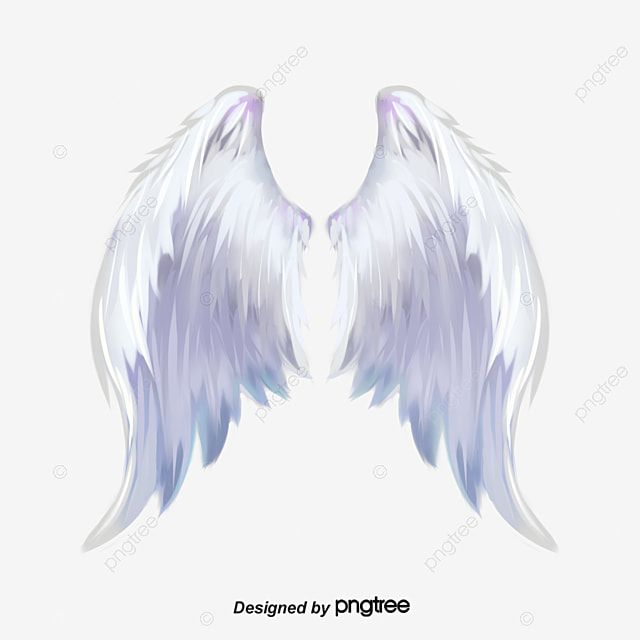 Wing Comic White Png Transparent Clipart Image And Psd File For Free Download Angel Wings Pictures Angel Wings Png Angel Wings Painting
