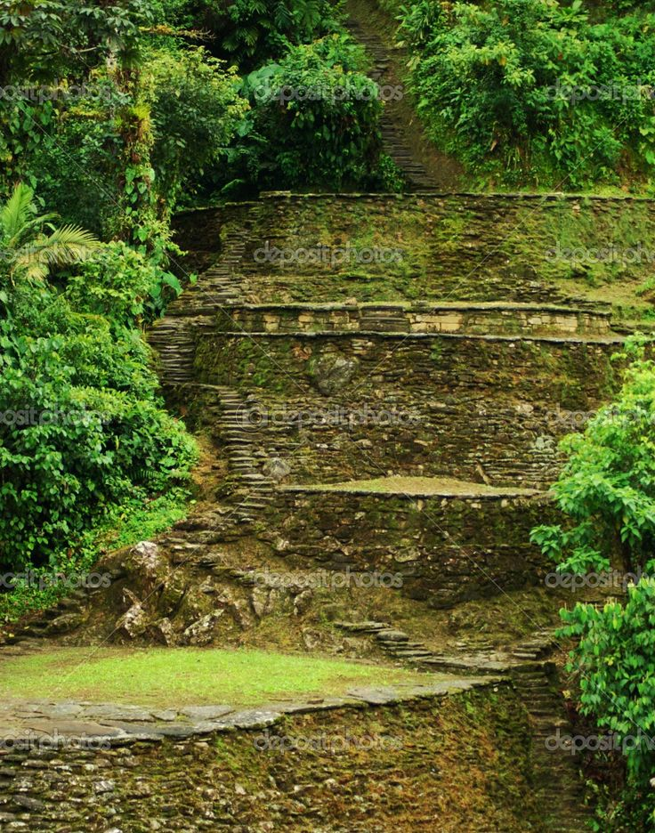 Terrazas en Ciudad Perdida, Santa Marta, Colombia