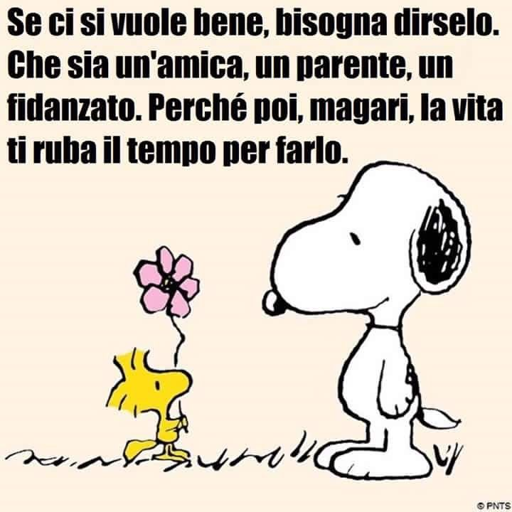 spesso 98 best Snoopy images on Pinterest | Peanuts, Snoopy and Smile GK15