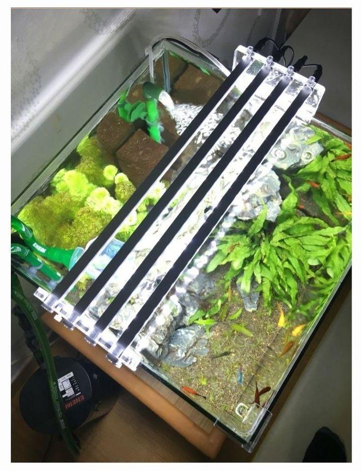 60cm 4Line 50W Korea Aquarium Fish Tank Cool White LED Plus Light Lamp Bar New #JLED #Korea #Aquarium #Fish #Tank #Cool #White #LED #Plus #Light #Lamp #Bar #New #JLED