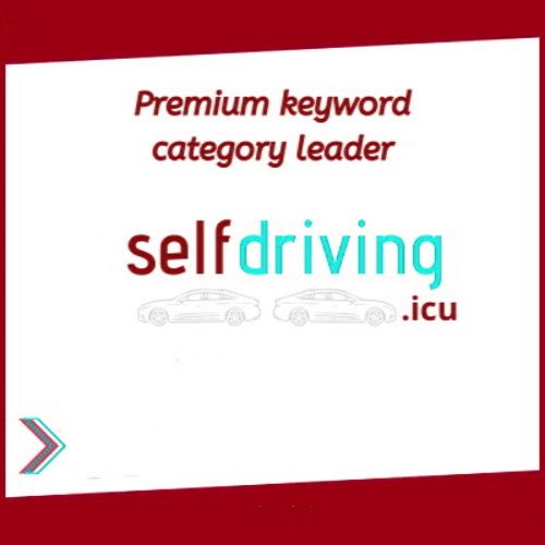 Selfdriving Icu Premium 1 Keyword Huge Growth Niche Domain Name For Sale In 2020 Self Driving Domain Growth