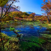 手つかずの自然が残る青森県で、水と緑に包まれる感動体験を。