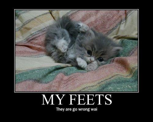 Image result for small feet funny