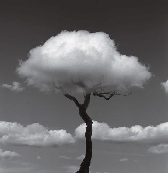 Španělský fotograf Chema Madoz tvoří optické iluze.