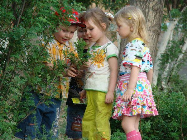 Детские Конкурсы | Фотографии Светлана Кораблева | 137 фото