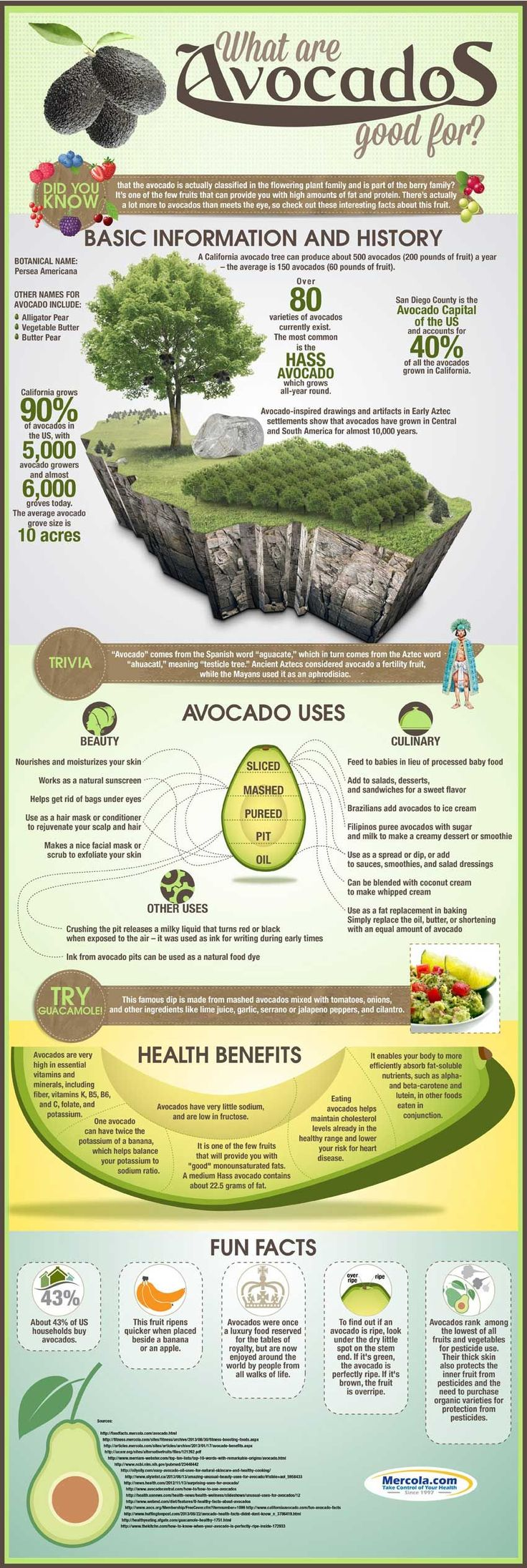 One of my favorite healthy fats - the avocado!