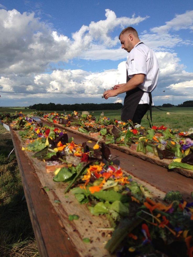 Amazing from the farm salads at Prairie Gardens. www.PrairieGardens.org