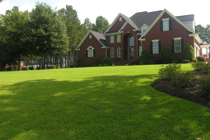 If you're looking for a low-maintenance lawn that adjusts well to poor soil, consider using centipede grass (Eremochloa ophiuroides). Centipede grass is ...