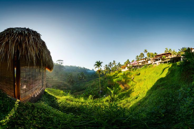 Let's discover #Bali and its numerous rice fields! #travel #motivationmonday #motivationalmonday #discover  #Luxly  @Luxly_indonesia
