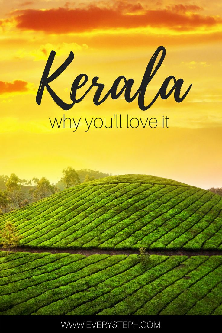Why Kerala, India, must be the most beautiful place on Earth. An introduction to Kerala through the 5 senses. Backwaters, houseboats, the Munnar tea plantations, beaches, and temples... Click to find out why Kerala is all of this and much more! | India Travel Tips | Travel Inspiration | Kerala Saree | a post by @everysteph