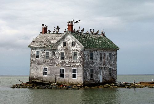 Rising water surrounds last house on Holland Island MD, Chesapeake Bay. (house since fallen).  A five-mile-long, 300-person fishing community, with more than 60 homes, a church and a doctor. But then sea level rose – and rose fast. Residents abandoned the island in the 1920s. The last house went under in October 2010.