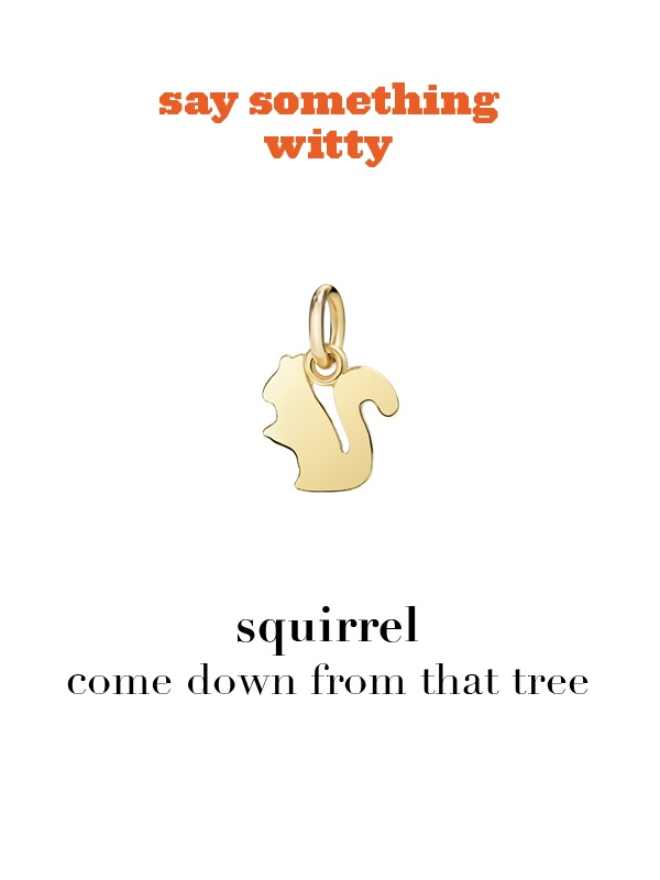 Dodo charm: squirrel - come down from that tree