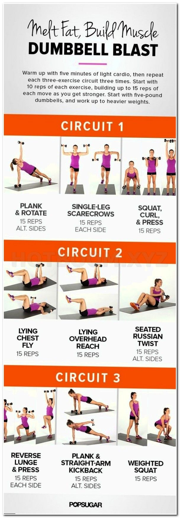 family fitness pla, elite fitness phuket, brock lesnar workout muscle and fitness, my fitness coach, lifetime family fitnes, gym workouts picture, lindora diet, fitness center west, weight loss workout plan for women, work out for the gy