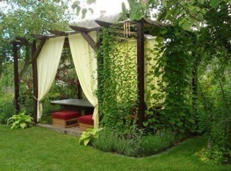 a pergola in the country
