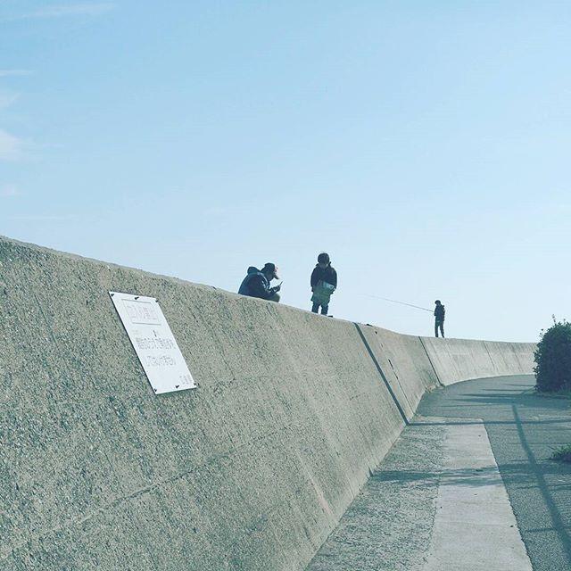 【masaharuuenaga】さんのInstagramをピンしています。 《だめって書いてあるんだけど いつもけっこういます。 . 撮影日:2017.1.1 -- #わりと地元の鞆の浦 #広島 #鞆の浦 #福山 #ぶらり旅 #海 #発見 #OMD #omdem5markii  #instatrip #instatravel  #igersjp #japan_of_insta  #photo_shorttrip #reminiii_fan #travel #we_japan #love_nippon #tokyocameraclub  #ptk_japan #風景 #カメラ #旅に行きたい #プチ旅行 #写真撮ってる人と繋がりたい  #写真好きな人と繋がりたい #ファインダー越しの私の世界  #ファインダー越しの世界》
