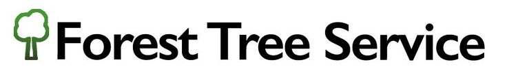 Forest Tree Service provides tree trimming, tree pruning, stump grinding, tree removal, and other tree maintenance services in the Oklahoma City area.