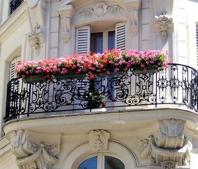 Perfect Balcony Garden