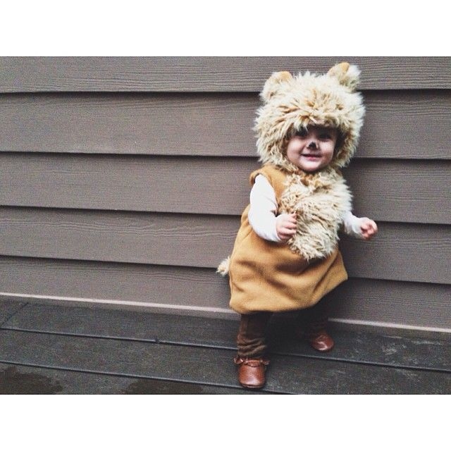 Cutest Lion Ever, maybe? Seriously. I died. So adorable. #freshlypickedmoccs #halloweencostume Instagram photo by @Jillian Medford Medford Medford Medford Medford Medford Medford Medford Medford Medford Taylor