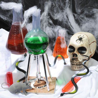 Halloween Mad Scientist Costume