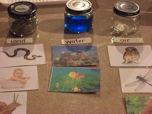 """montessori land, air and water activities: i like the idea of combining 2 different, but similar ways of doing this: maybe putting the pieces of paper that say """"land, air, water"""" in/to the jars as a visual for little ones that don't know how to read yet."""