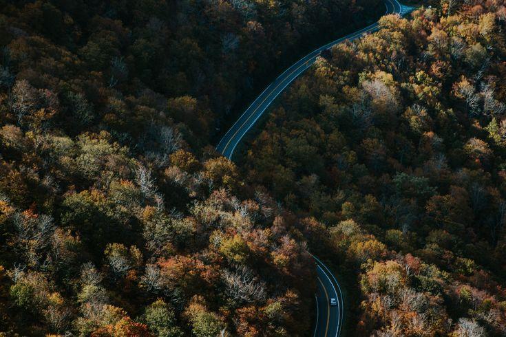 [#HD Wallpaper] #Autumn Park Avenue Volkswagen, Park Avenue Toyota Brossard, #Car Autumn leaf color, #Forest #Road Park Avenue Lexus Sainte-Julie  - Photo by Ivana Cajina @von_co (unsplash)  - Follow #extremegentleman for more pics like this!