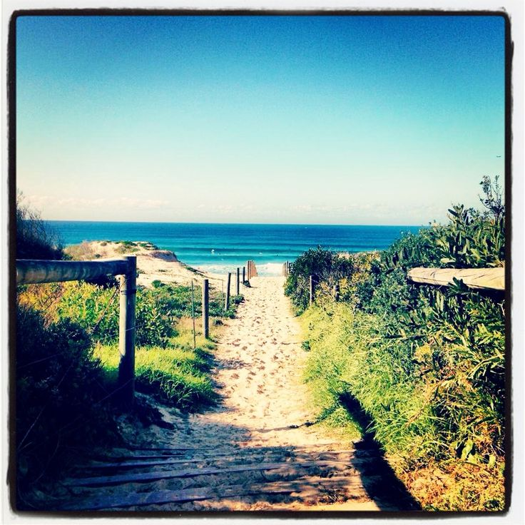 Why would Cronulla Sharks ever want to leave this place for QLD? Spoiler alert, they will keep the team in the Shire!