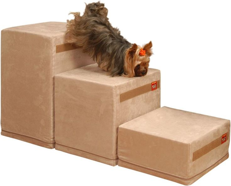Best Sturdy Dog Ramp For Bed