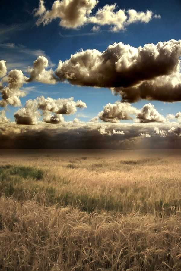 Field 1 by Alegion-stock.deviantart.com on @deviantART. This makes me wonder what life would be like if clouds routinely went overhead at about 40 feet. Maybe I just need more coffee. Nice image, anyway.