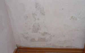 """Wand feucht / nass hinter der Dusche – """"Fliesenfugen undicht"""" (Schimmel) - http://penz-bautenschutzstoffe.de/wand-feucht-nass-hinter-der-dusche-fliesenfugen-undicht-schimmel/"""
