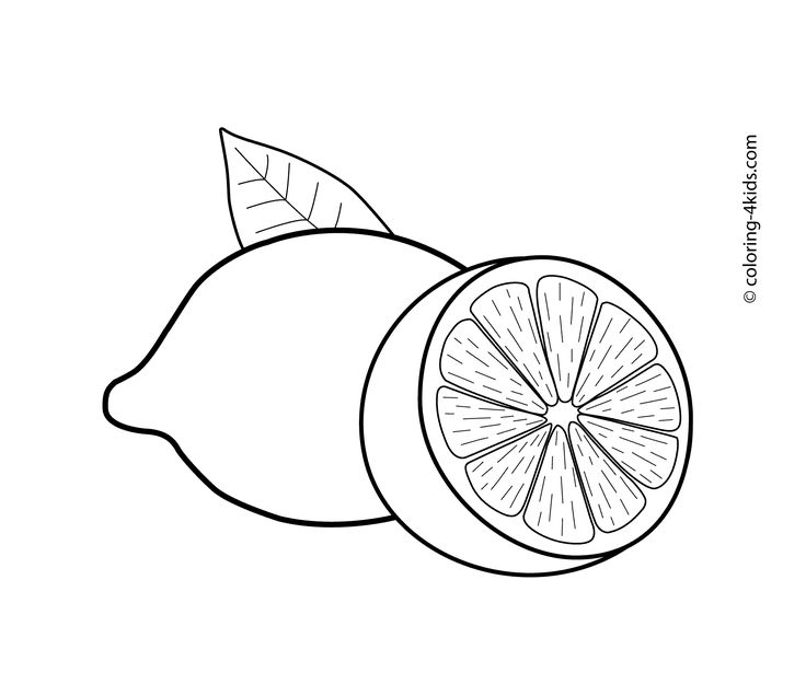 317 best images about arabic alphabets crafts coloring for Lemon coloring page