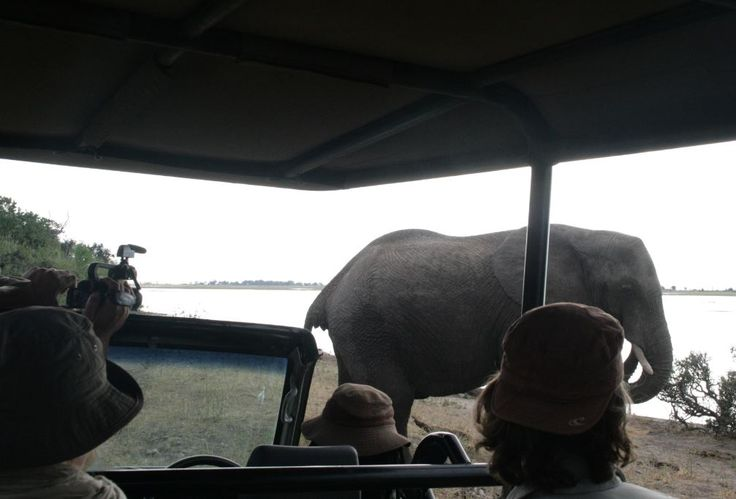 Authentic African Adventures with Hanno van Rensburg in Botswana