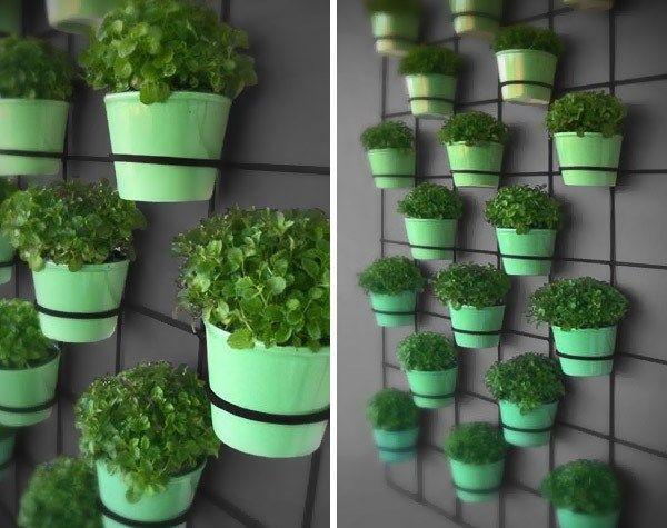 Plantadores de pared Insitu llenos de macetas