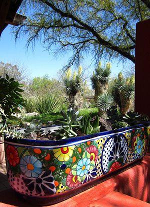 "Tucson Botanical Gardens. See some of our visit at themagicgarden.com ""Mort's Videos""."