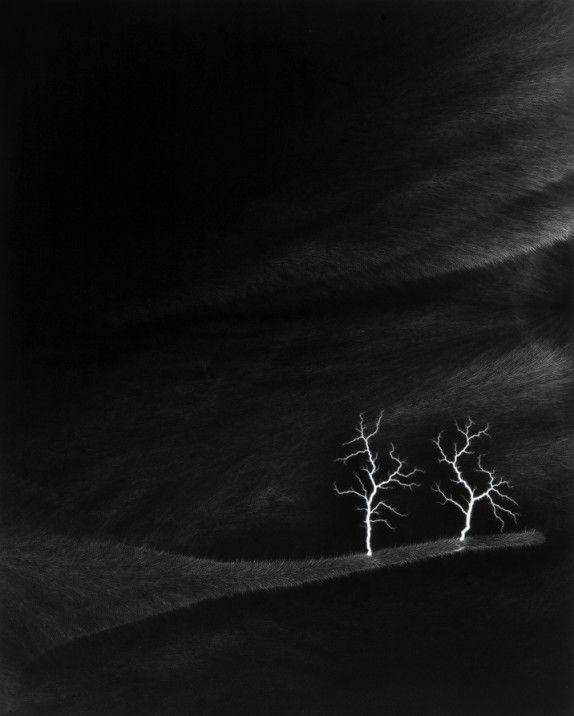 Les photos d'électricité d'Hiroshi Sugimoto (Lightning Fields) - Il n'utilise pas d' appareil, il se contente d'envoyer des arcs électriques de 400 000 volts dans des plan films noir et blanc pour capturer les déplacements de l'électricité.