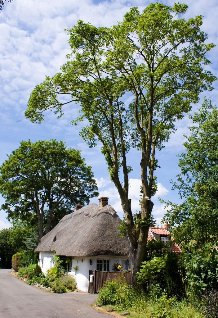 https://flic.kr/p/8yr9bw   Ashby Cum Fenby Thatched Cottage