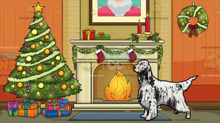 An English Setter Show Dog With Living Room Decorated For The Christmas Holidays Background :  A dog with white long fur and dark grayish spotty face and droopy ears looking ready for a dog pageant and A room with orange walls beige tiles and fireplace a green Christmas tree that is nicely decorated with ornaments adorned with multiple colored gift boxes grayish blue carpet and a decorated wreath hanging on the wall and a framed picture of a man with white beard and wearing a red shirt