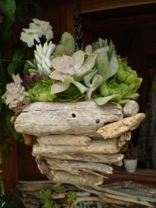 Driftwood hanging basket, $150