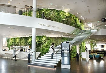 1000 images about biophilic design on pinterest for Sky design hotel