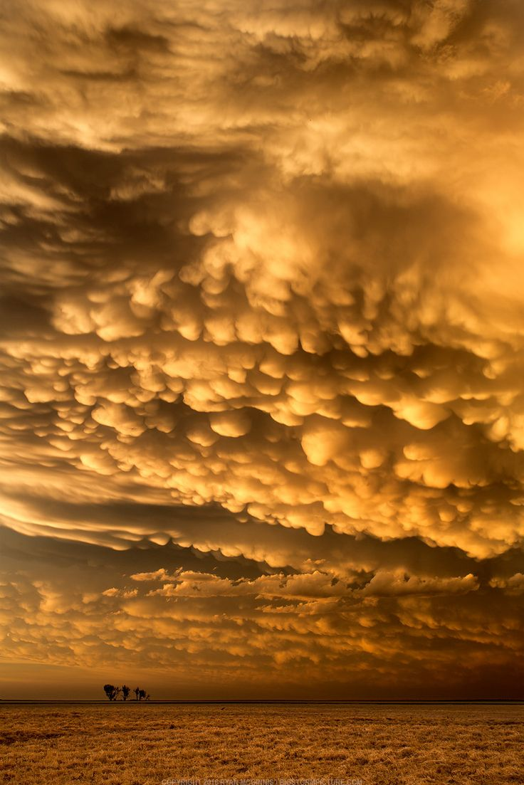 https://flic.kr/p/Ht8Vdc | Kansas after a storm | Just south of Dodge City, Kansas, after a storm that produced between 10 and 15 tornadoes (so many that most storm chasers lost count). VMD: Mamatus
