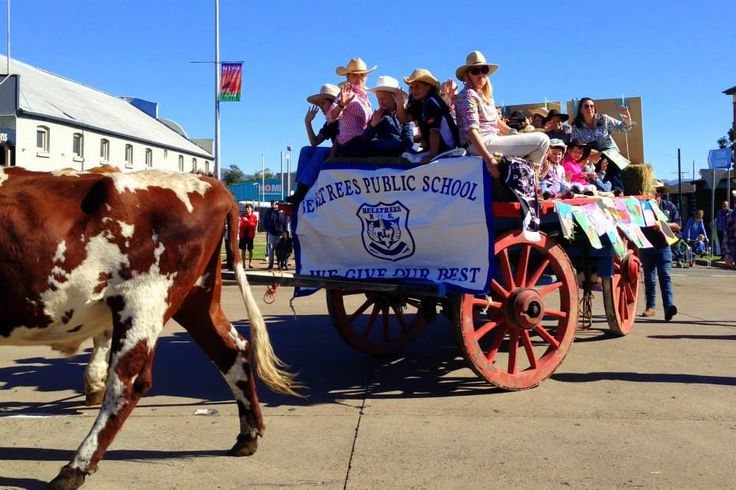 Belltrees Public School in the Scone Horse Festival Parade