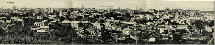 Orașul Cernăuţi. Panorama.