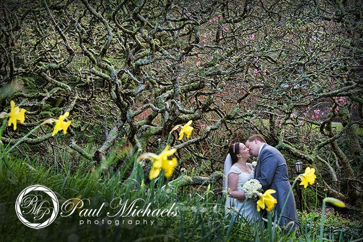 Kiss in the daffodils at botanical gardens. PaulMichaels Wellington wedding photography http://www.paulmichaels.co.nz/
