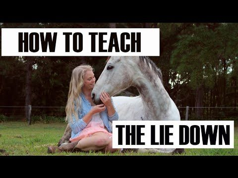 Teach your horse how to lay down with NO ROPES - 3 Methods with Videos — Begin the Dance with Sandra Beaulieu