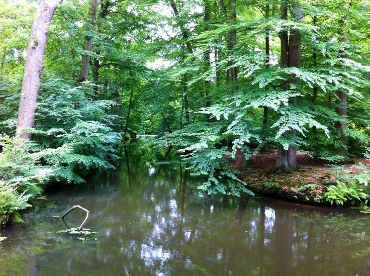 Op landgoed #Twickel, ook #hofvantwente  kun je uren heerlijk #wandelen. Prachtig natuurgebied. #overijssel